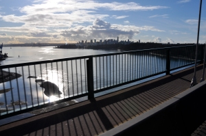 The View from the Lion's Gate bridge. Stanley Park is on the right.
